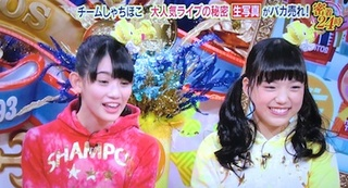 teamsyachihoko.jpg